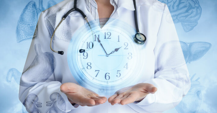 Stundenplan der Organe