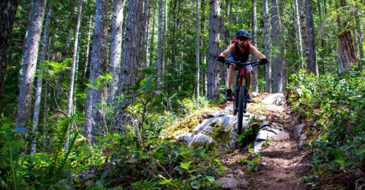 Naturpower – Mehr Ausdauer beim Sport